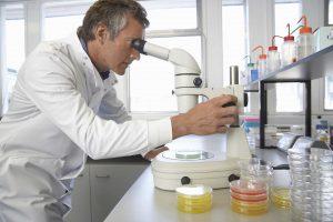 scienziato studia ingegneria genetica